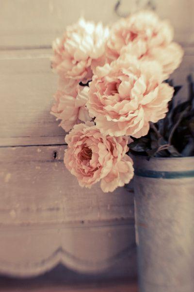 peonies. My favorite flower. They were even my wedding bouquet flower:)