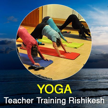 The yoga teacher training course in Rishikesh allows you to learn yoga in the right environment and meet experienced teachers and learn from them.