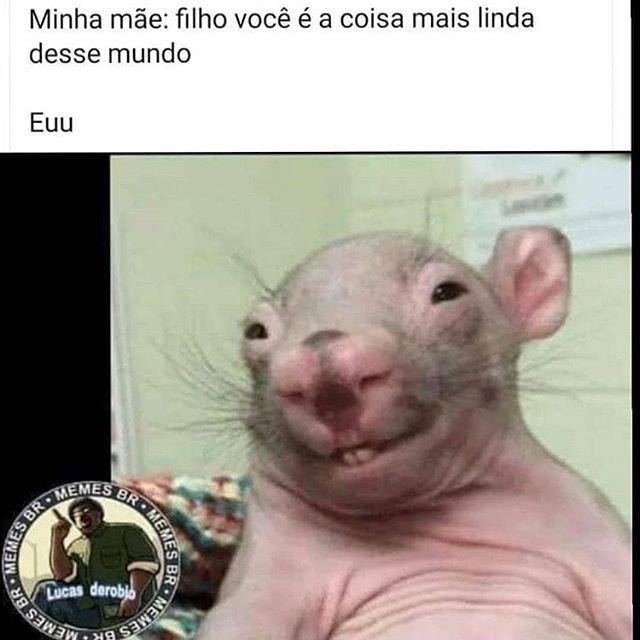 Coletanea De 58 Memes Engracados Brasileiros Novos Da Semana