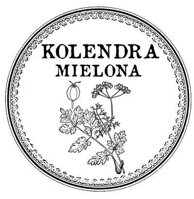 kolendra mielona