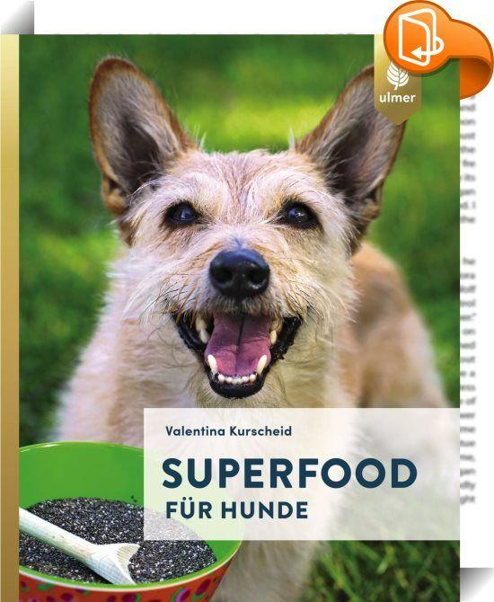 """Superfood für Hunde    :  Der gesunde Ernährungstrend – jetzt auch für Hunde! Welches Superfood tut Hunden gut und welches ist tabu? Valentina Kurscheid klärt auf, was man bedenkenlos füttern kann, welchen gesundheitlichen Nutzen bestimmte Samen, Öle, Obst, Gemüse und Kräuter haben und gibt """"hunde-relevante"""" Infos zu Amaranth, Ingwer, Kokosöl, Löwenzahn & Co. Mit innovativen Rezepten für selbst gemachte Snacks und zur Futterergänzung. Ob fruchtiger Superfood-Shake, Chia-Reistaler oder ..."""