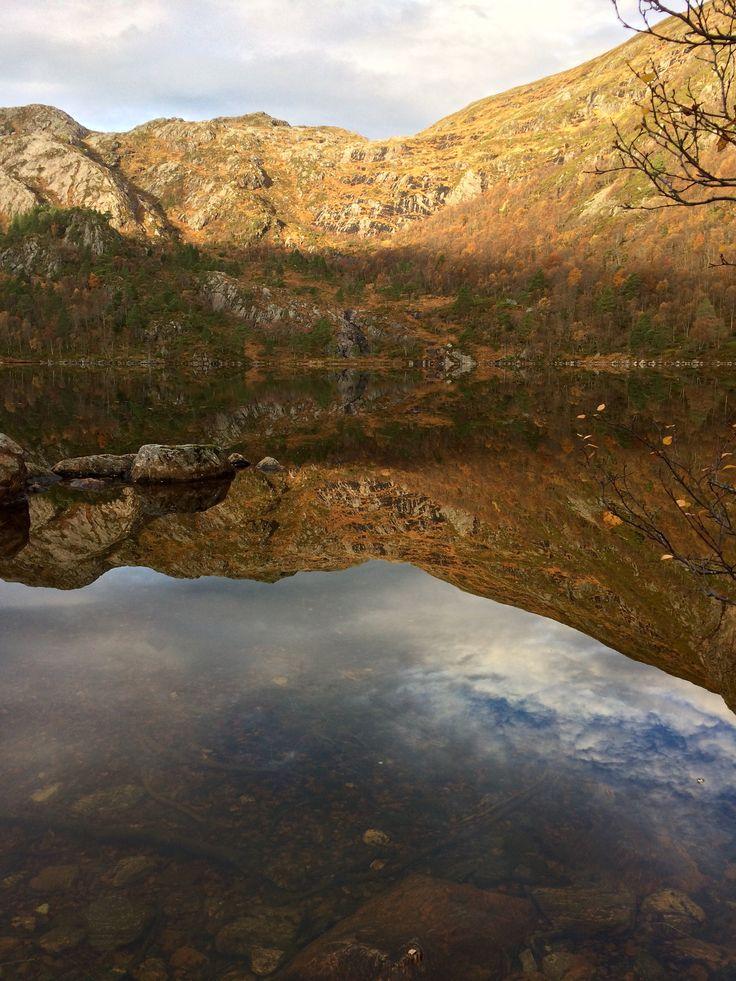 Золотая осень в Норвегии 😍😍😍🍂🍂