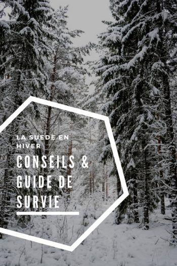 La Suède en hiver : conseils pratiques et guide de survie - Ti' Piment