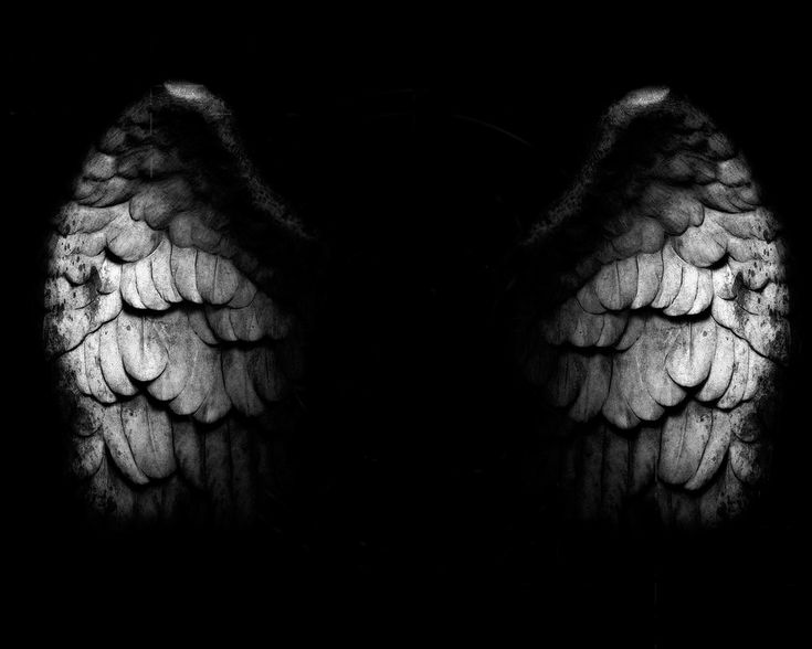 Grey Angel Wings