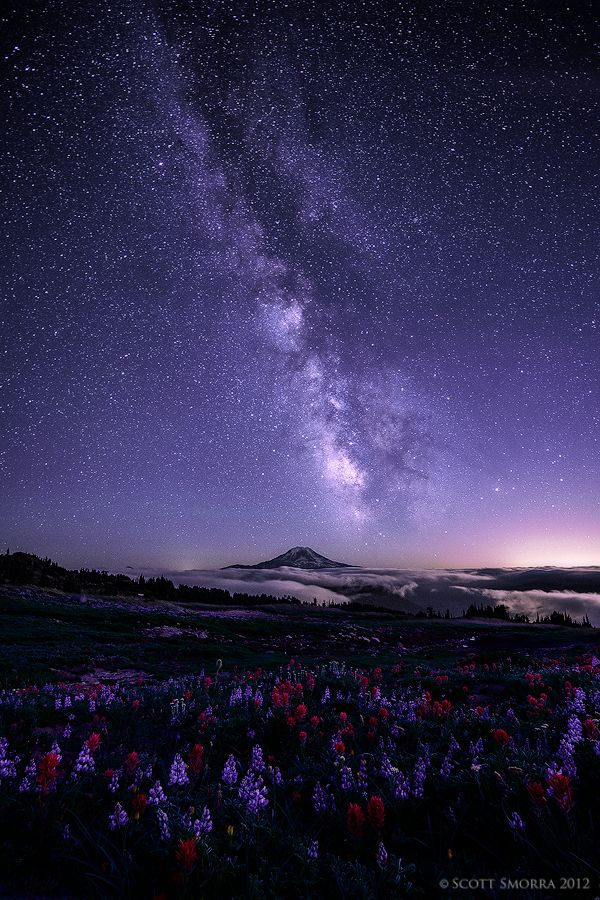 Celestial Existence by Scott Smorra on 500px The Milky Way and millions