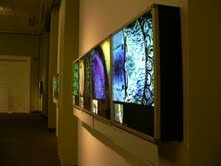 The intelligent design - Iziko SA Museum