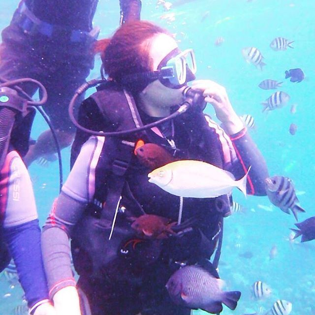 @add_hailey on Instagram: 물고기야 안녕? 이쁜애들만 이리온 #보라카이 #boracay #스쿠버다이빙 #스킨스쿠버 #scuba #scubadiving #여행 #바다 #물고기 #underwater #fish #whitebeach #다이빙