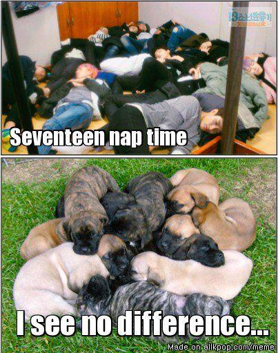 Seventeen Nap Time