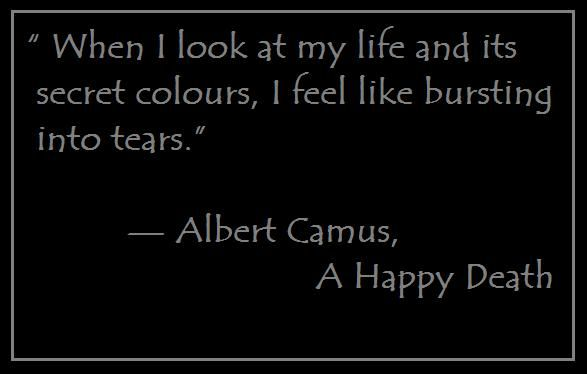 a literary analysis of the plague by albert camus Albert camus 1913 - 1960 camus was the second youngest-ever recipient of the nobel prize for literature (after rudyard kipling) when he received the award in 1957.