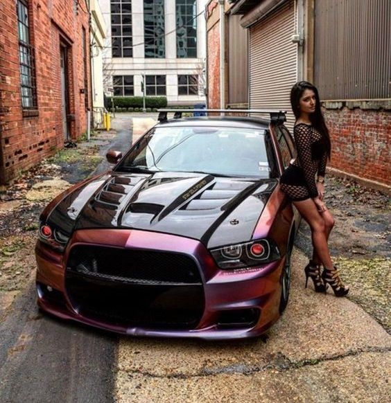 850 best Mustang images on Pinterest