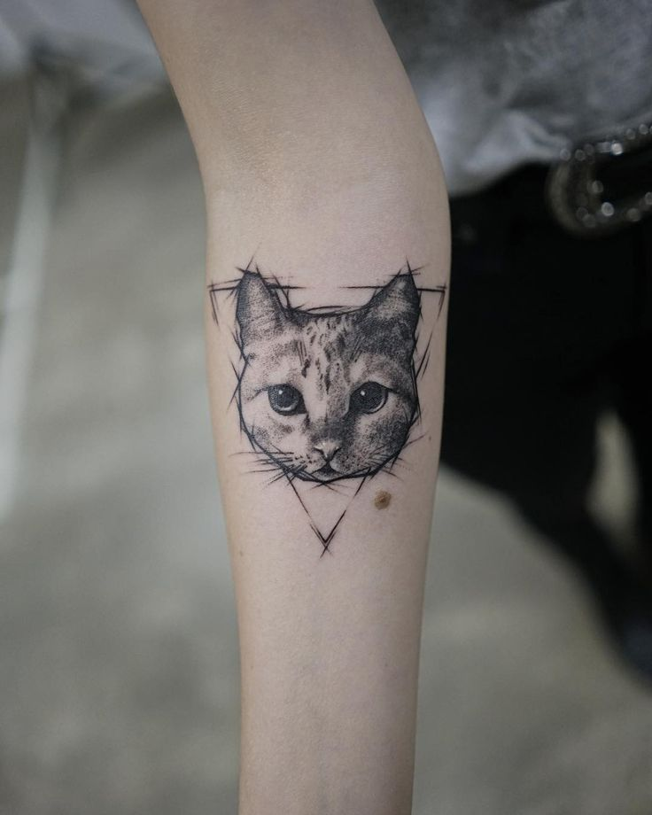 Cat Tattoo Fineline Realism Tattoo Fineline Tattoo Bern Tattoo Schweiz Switz Fineline Realis Tatuagem Minimalista Gato Tatuagens Aleatorias Tatuagem