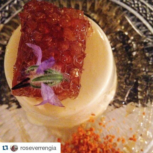 "#Repost @roseverrengia ・・・ ""Panna Cotta com mel ,favo,pólen e flor da Ilha de Ios,Grécia"".. Thank you @roseverrengia for sharing your delightful experience with us! #grandmas #restaurant #liostasi #ios #iosisland #gastronomy #taste #food #foodies #sweet #pannacotta"