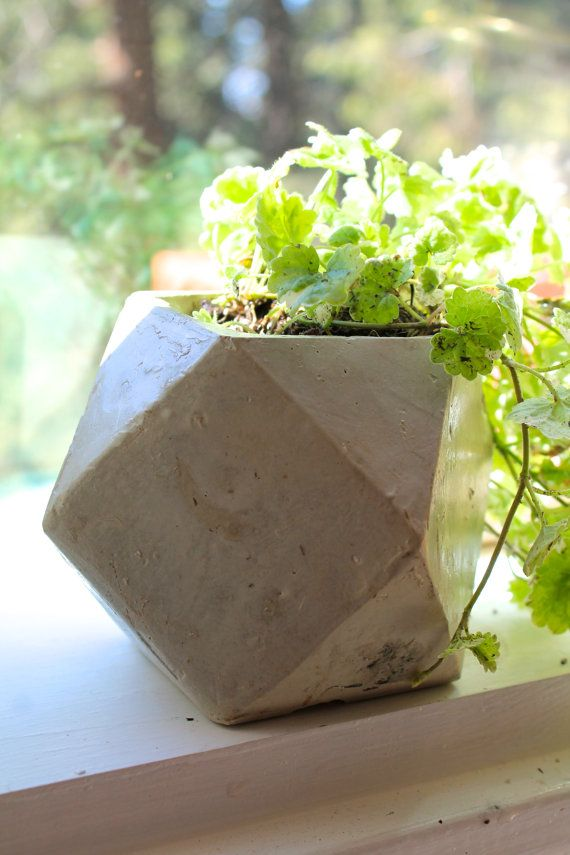 Polygon Planter