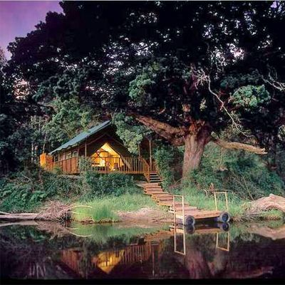 The Majestic 4* Botlierskop Private Game Reserve in Mosselbay