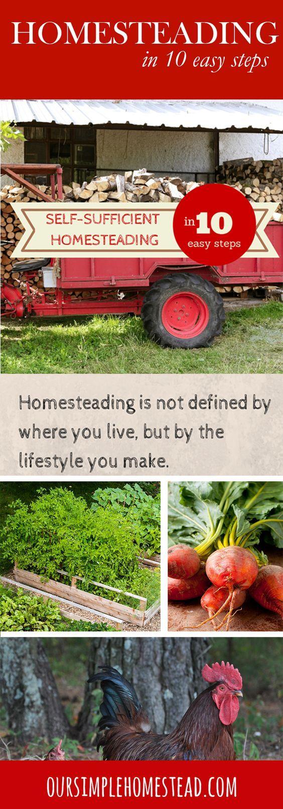 best 25 self sustaining farm ideas on pinterest life hacks