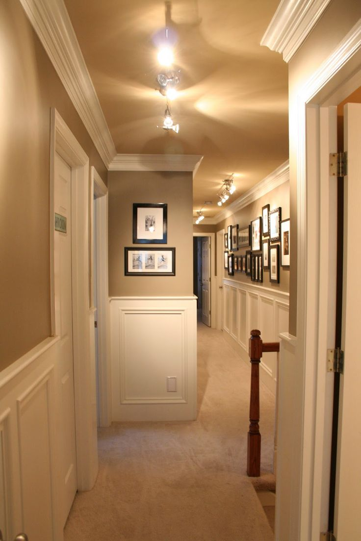 hallway with wainscoting, crown molding and portrait gallery