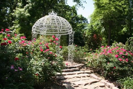 See beautiful blossoms at Lendonwood Gardens in Grove, Oklahoma.