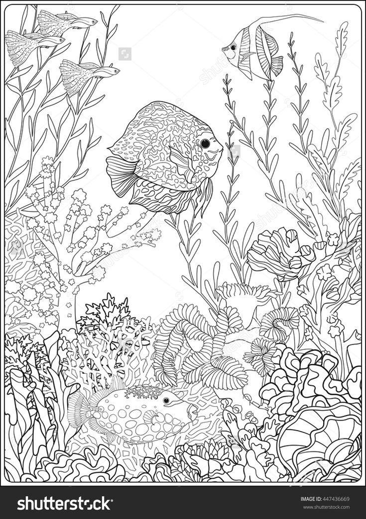 356 best Color - Sea/Mermaid images on Pinterest ...