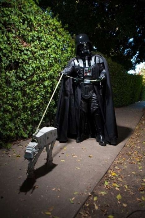 Just out for a walk in the park