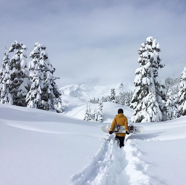 Woohoo! Winter is near! Where to.. where to... 😝🤘🏻