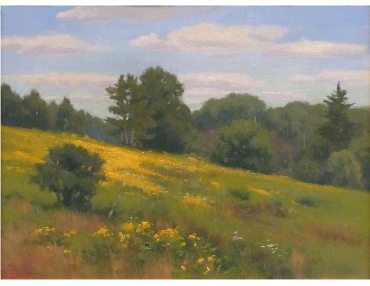 """Wildflowers in a mountain meadow are captured in this original landscape oil painting painted """"en plein air."""" canvas board in wooden frame, overall 24"""" W x 20"""" H Ships within 3 days. by Richard Abraha"""