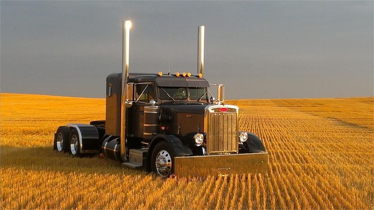 1959 PETERBILT 359 For Sale At TruckPaper.com. Hundreds of dealer, thousands of listings. The most trusted name in truck sales is TruckPaper.com.