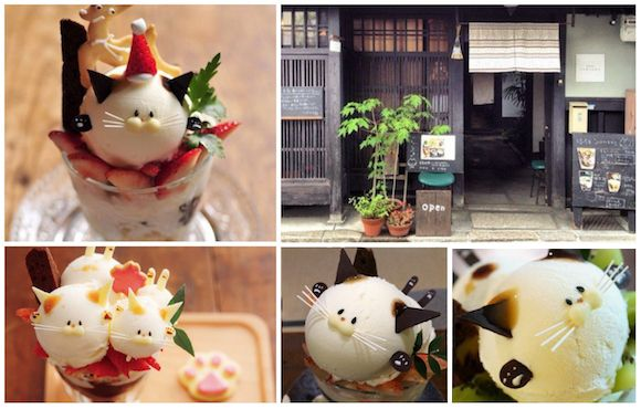 Now you can enjoy all the delights of a cat-shaped dessertwhile immersed in the traditional culture of Kyoto.