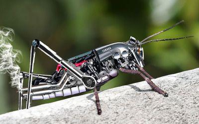 Yamaha grasshopper wallpaper