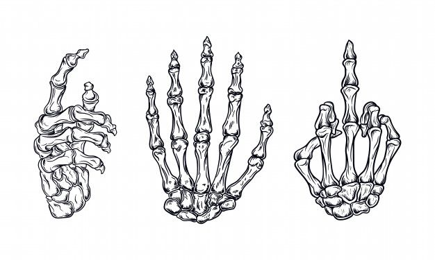 Hand Bones Set Vector Illustration Skeleton Drawings Skeleton Hands Drawing Skeleton Hand Tattoo