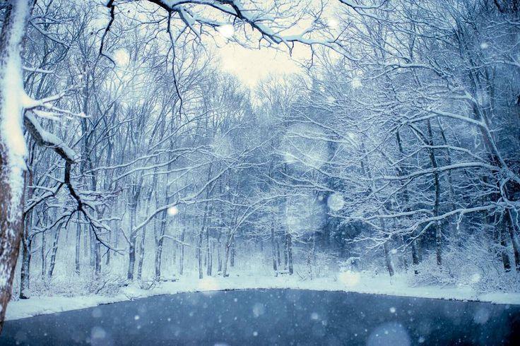 撮り納めのお気に入りの池  除雪されてなかったのに、よくここまで来れたなーっ(笑)  .  .  .  location:Niigata  。  。  。  #airy_pics  #Super_photolongexpo  #ig_humanplus  #igRepresent  #Far_EastPhotoGraphy  #Loves_United_Life  #Lovers_Nippon  #japan_daytime_view  #japan_night_view