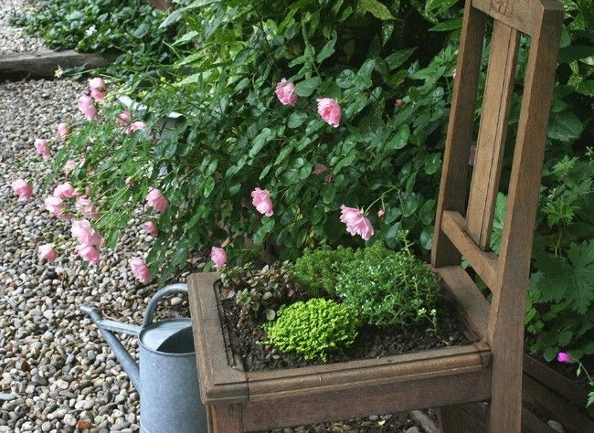 1000 id es propos de plantes de rocaille sur pinterest fleurs en pots p - Idee recuperation jardin ...