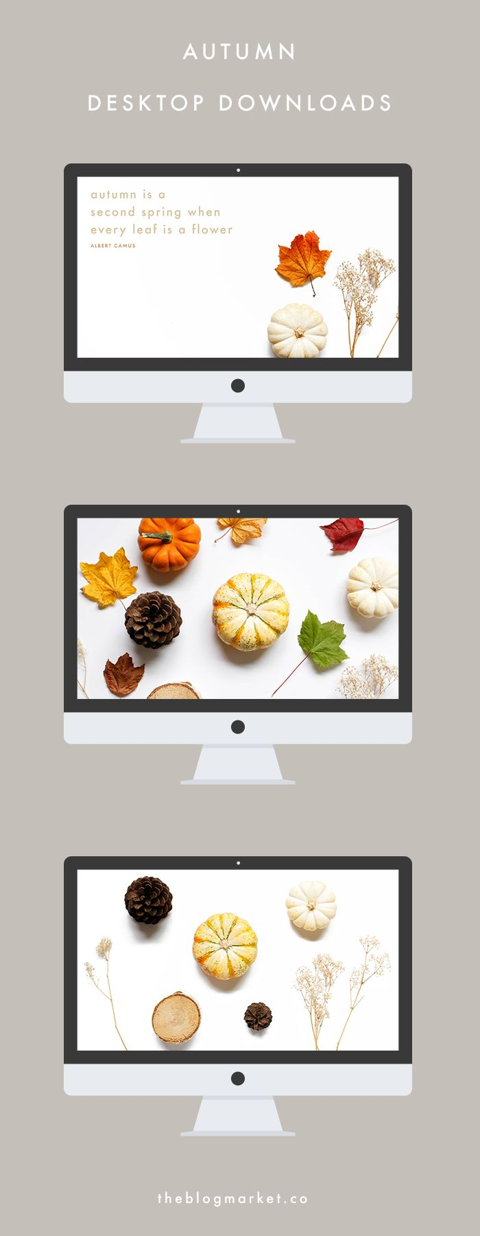 Autumn Desktop Downloads | The Blog Market