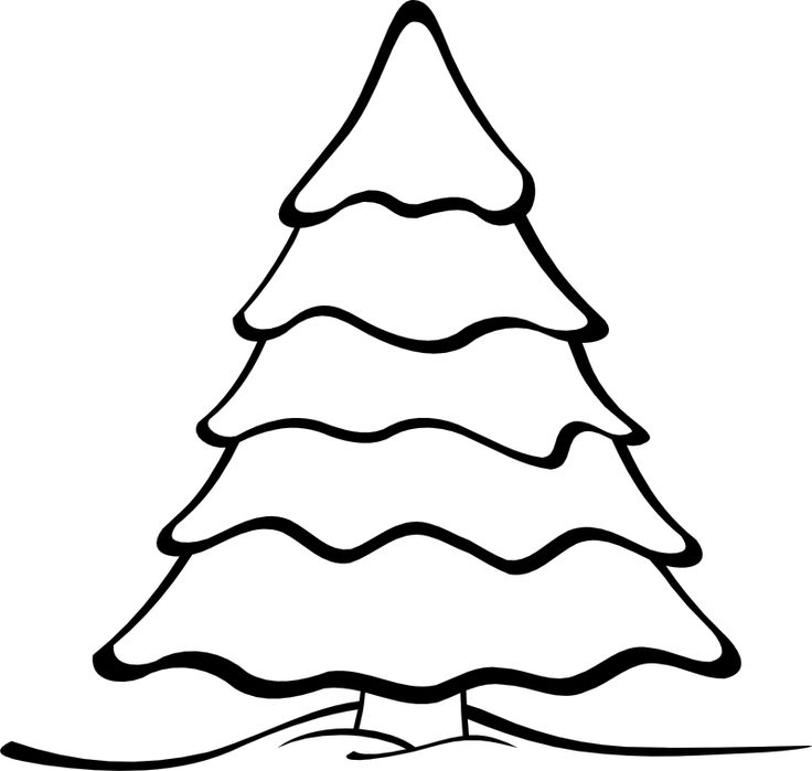 17 best Trees images on Pinterest  Drawings Evergreen trees and