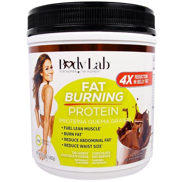 BodyLab, Fat Burning Protein, Decadent Chocolate Fudge, 15.2 oz (432 g)