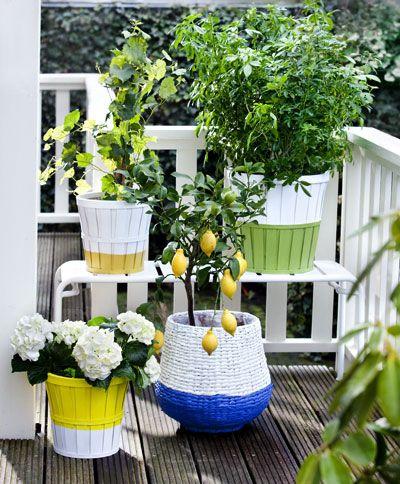#dip-it gedipte bloempotten, styling: Susanne Houx, fotografie: Brigitte Kroone