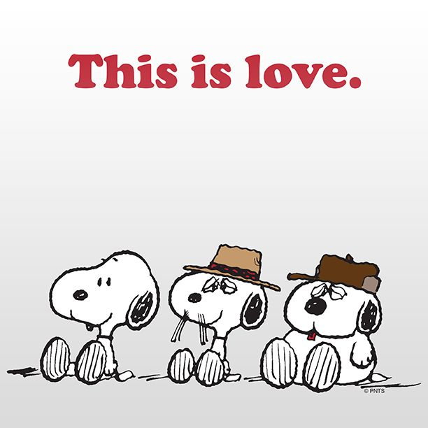 242 best PEANUTS images on Pinterest | The peanuts, Animated ...