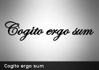 """Cogito ergo sum: la famosa divisa del filósofo francés Descartes, traducida a su vez del francés original en que escribió su Discurso del método (donde figura). """"Pienso, por lo tanto existo"""", dijo Descartes, quien investigaba las razones de la existencia."""