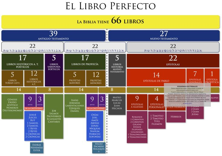 la biblia de la memoria Download eBook PDF/EPUB