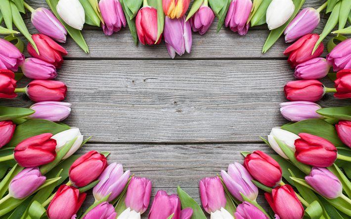 Scarica sfondi Tulipani rosa, fiori di campo, il cuore di tulipani, quadri, fiori, tulipani