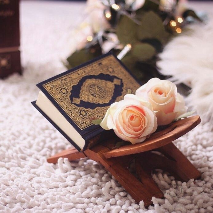 And be patient, [O Muhammad] and your patience is not but through Allâh. And do not grieve over them and do not be in distress over what they conspire. Indeed, Allâh is with those who fear Him and those who are doers of good. (Surah An-Nahl. 127-128)