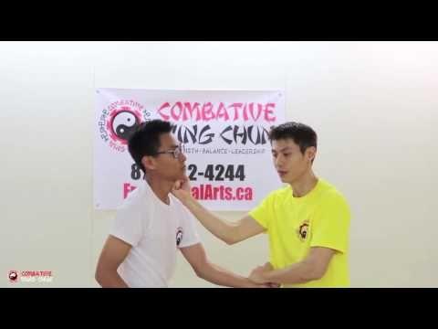 Wing Chun Technique COMPOUND POWER
