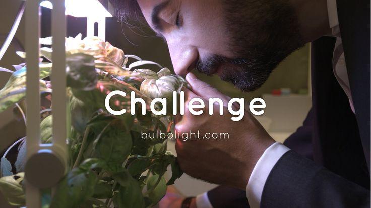 Challenge - Bulbo 2014/15 [ENG]