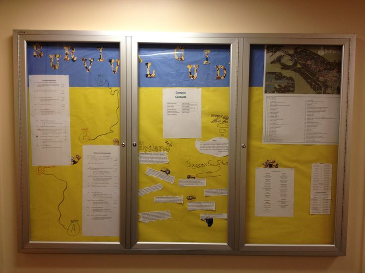Resident assistant bulletin board on how to succeed in college. Bethany college, West Virginia. Via Dakota Maravellis sophomore RA 2013
