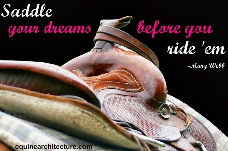 Saddle your dreams...