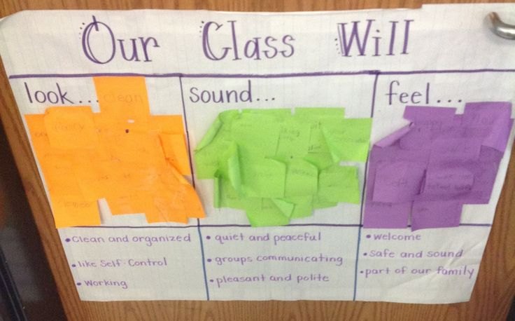 "Classroom Code of Cooperation:  ""Our class will look.. sound... feel.."" This is created with the students individual responses, then the group identifies common language to make a class wide code of cooperation."