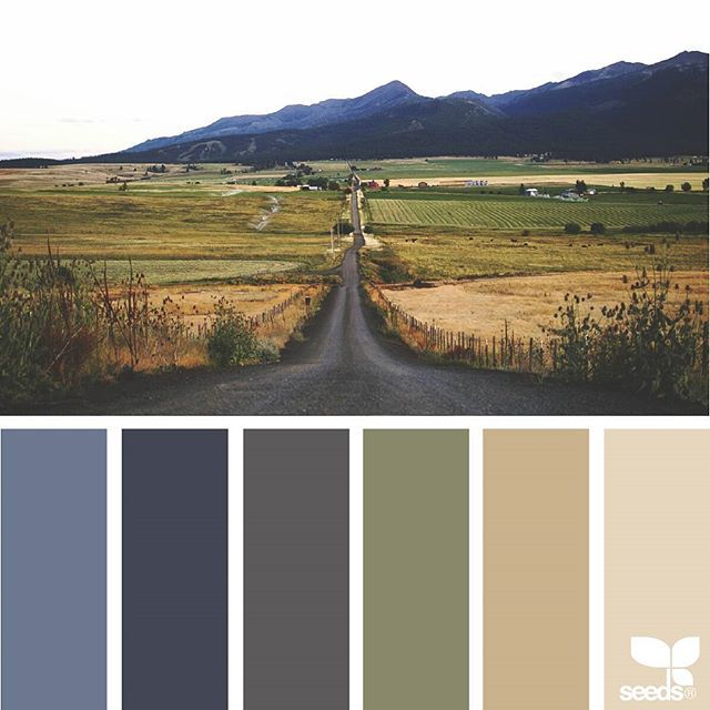 today's inspiration image for { color road } is by @jenelle.botts ... thank you, Jenelle, for another incredible #SeedsColor image share!