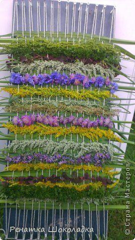 Флористика Ткачество ручное Панно - гобелен из трав и цветов + описание процесса Материал природный Трава фото 2