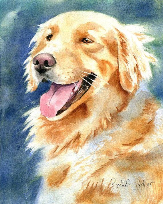 Golden retriever chien peinture portrait original art aquarelle art pet portrait chiens art - Dessin golden retriever ...
