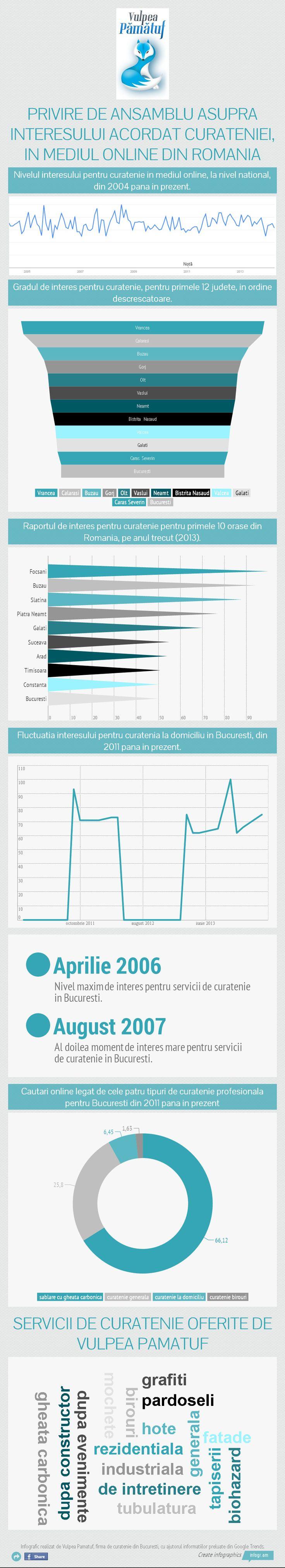 infographic curatenie