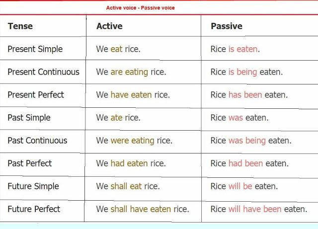 english grammar book pdf in bengali